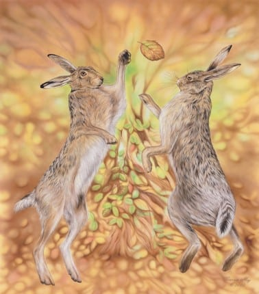 Hares boxing in Autumn Leaves. A leaf has been kicked up in the air between the two hares.