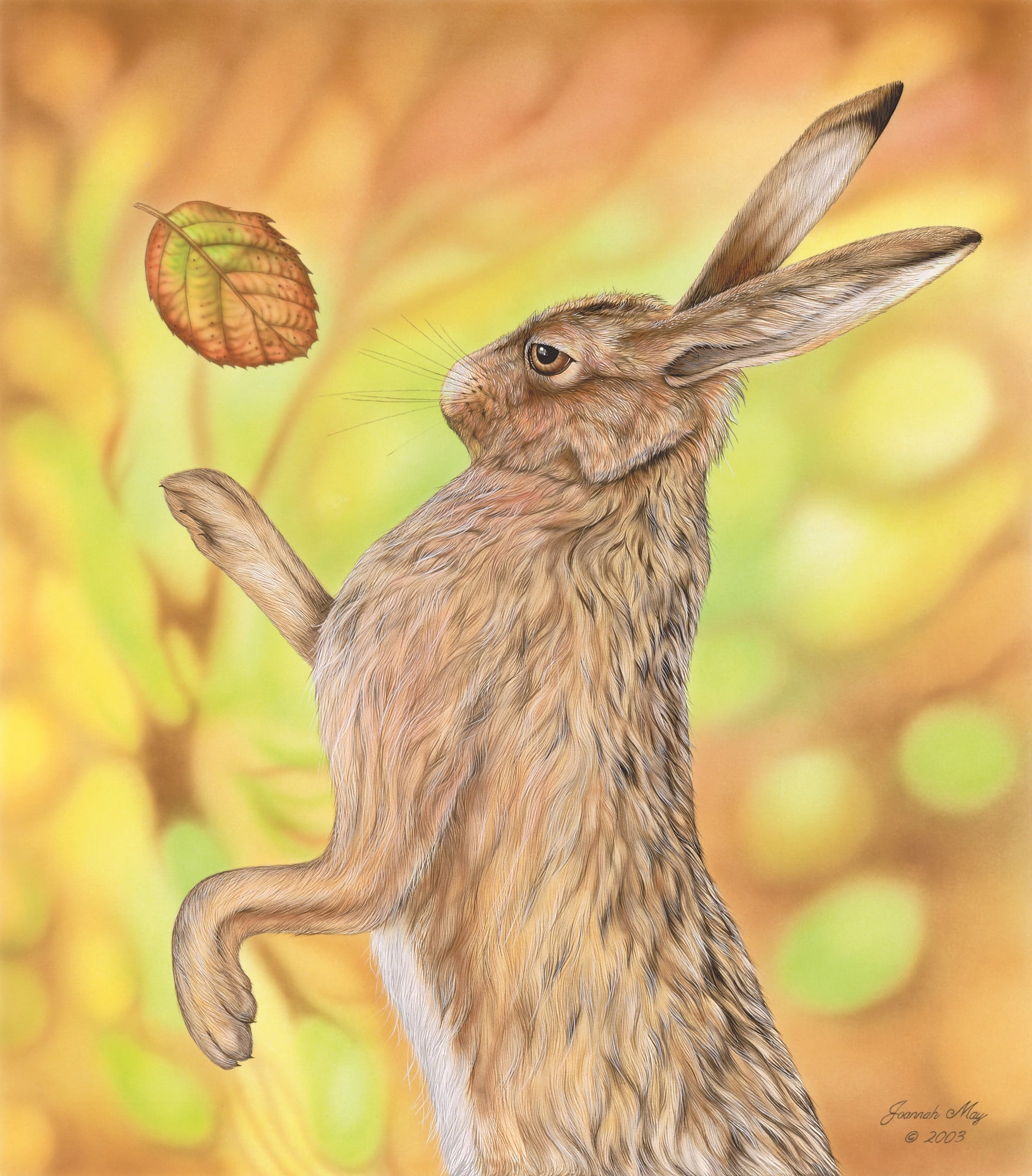 A painting depicting a 'dancing' male hare. The hare has won a boxing match and a single bramble leaf which was kicked up during the fight is now falling slowly.