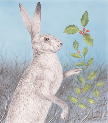 A winter scene depicting a male Hare and a sprig of Holly falling to the ground.