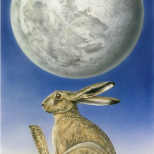 The Hare in Moon - a painting by Joanna May. A Hare is sat in a field, in the sky above is a full moon. The image of the hare appear in the moon.