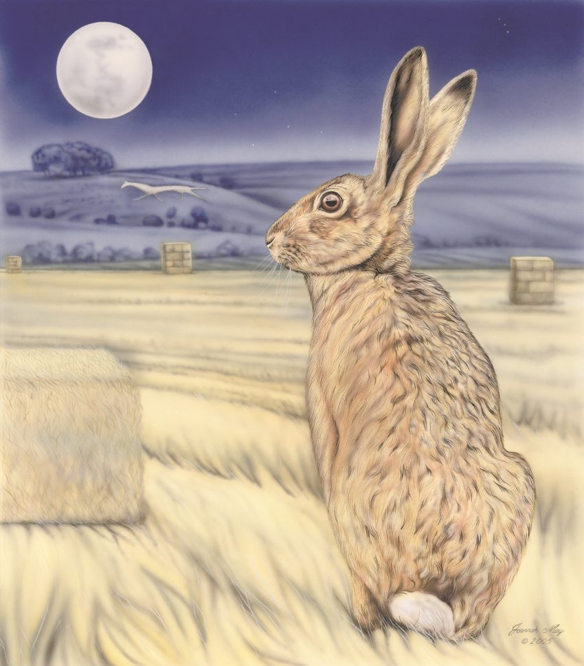 Moon Gazing Hare. A painting by Joanna May of a hare gazing at the moon, with a white horse on a hill in the background.