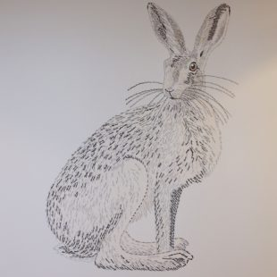 Joanna May's Hare-Kin painting shows a Hare sitting with it's head towards the viewer. The picture is made up of the word 'Hare-Kin' repeated over and over.