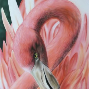 11_Pink_Feathers