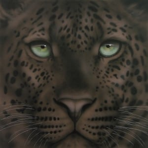 2_Black_leopard