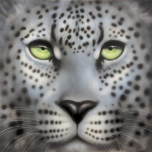Joanna May Snow Leopard