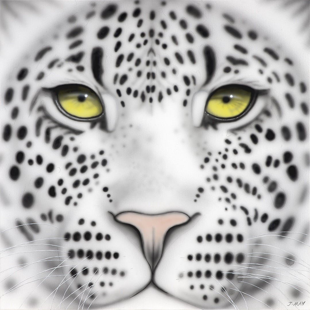 Joanna May's painting of a Snow Leopard. It is a close up of it's eyes, nose and mouth.