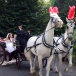 13 The carriage ride to the wedding reception