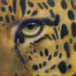 20 Gold Leopard Eye close up