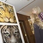 7 The new gold leaf tigers being admired.
