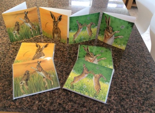 Hare cards 1