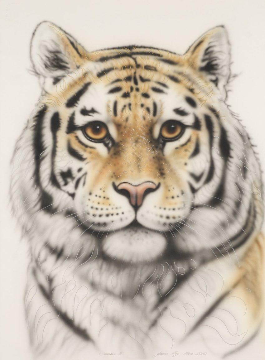 Sandari Tiger by Joanna May
