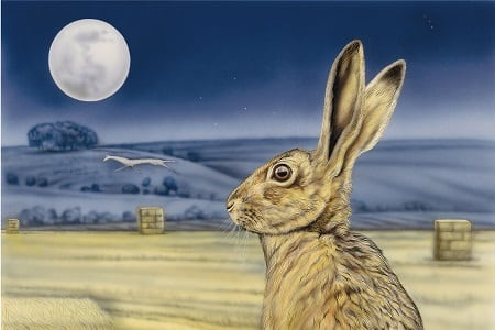 moon gazing hare featured image