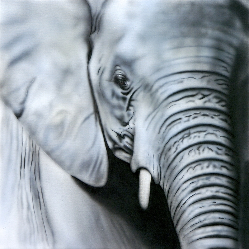 Grey Blue (elephant)