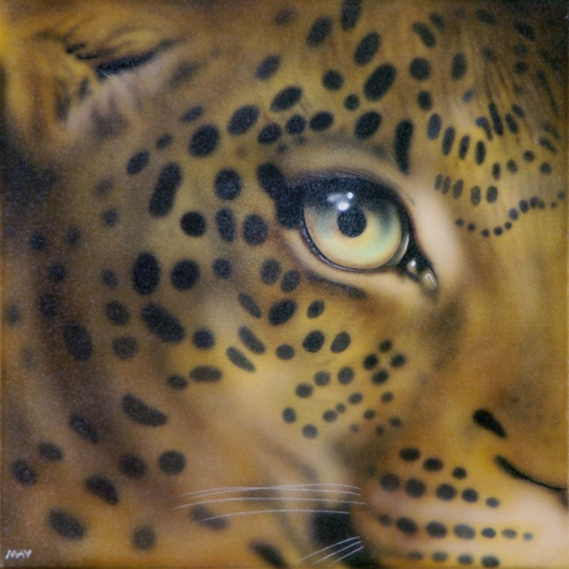 Eye of Leopard I