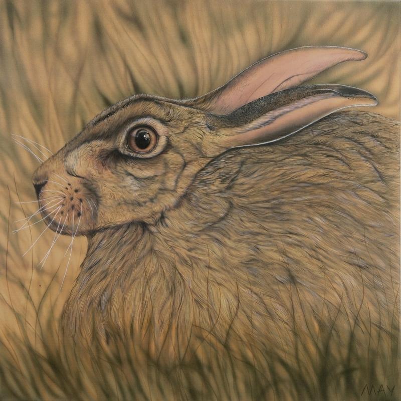 Africa Omen - Hare